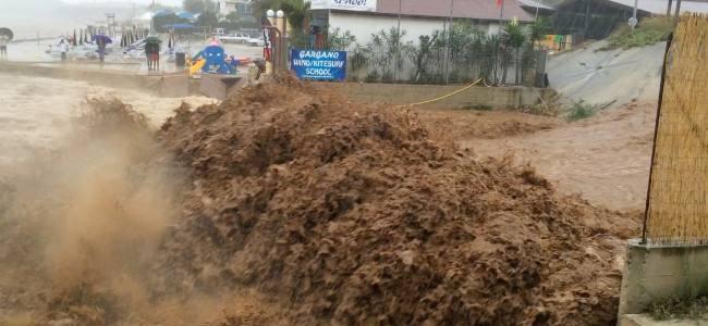 Siete regiones del Perú en emergencia sanitaria por impacto de lluvias e inundaciones