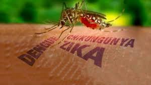 Dengue: premier vaccin expérimental