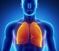 Greffe de poumons: nouvelle technique médicale
