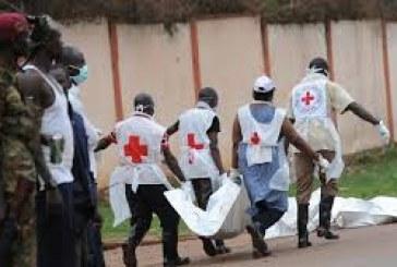 Bangui, la Croix-Rouge recherche un coordinateur des opérations