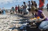 231 migrantes muertos o desaparecidos en frontera EE. UU.-México este año, reporta OIM