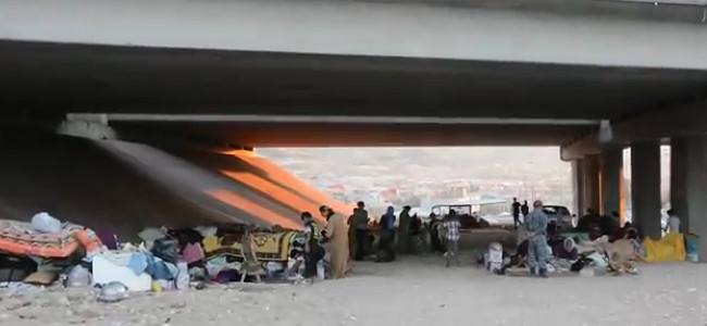 """La Croce Rossa avverte: """"E' emergenza profughi nel nord dell'Iraq"""
