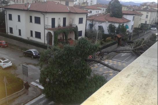Maltempo, 2 morti in Toscana – le foto dal web