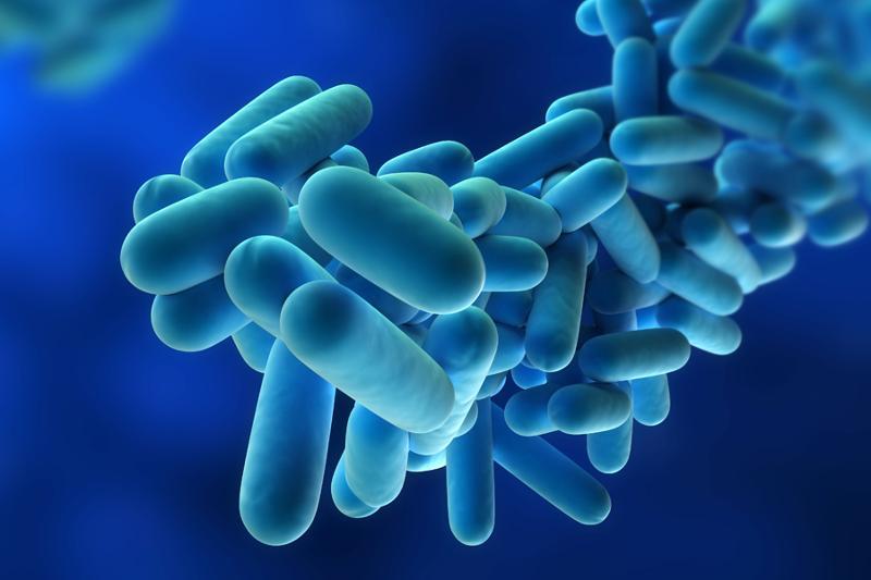 Legionellosi: novità nei piani di autocontrollo