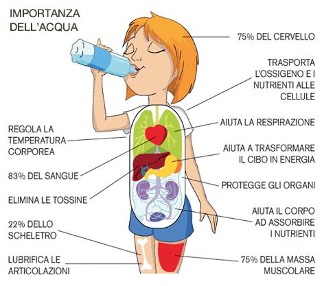 disidratazione4.jpg