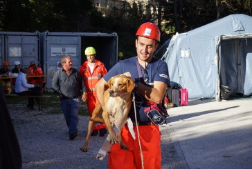 Terremoto Centro Italia: l'assistenza e il soccorso dei volontari
