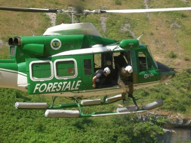 Corpo Forestale dello Stato, divisione dei beni tra Carabinieri, Vigili del Fuoco e Guardia di Finanza