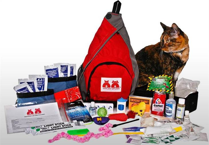 pet-emergency-kit
