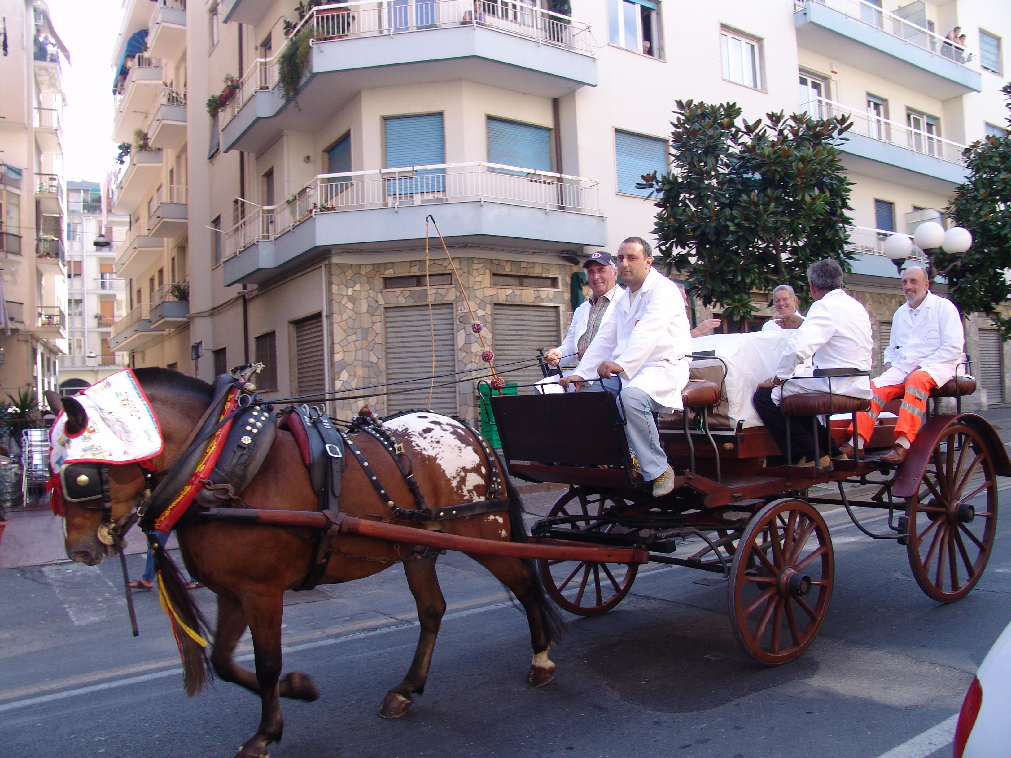 Carrozza a cavalli