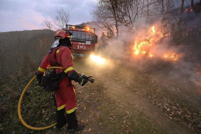 Incendi boschivi, il dramma non si ferma. Ancora più di 40 interventi