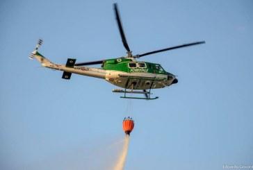 Curcio: non abbassare la guardia sugli incendi boschivi