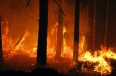 Incendi boschivi: oggi 31 richiete d'intervento aereo