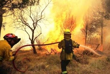 Incendi boschivi: oggi 29 richieste d'intervento aereo