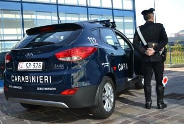 Sicurezza ambientale, i Carabinieri firmano accordo con ISPRA per vigilanza, monitoraggio e controlli