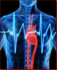 Foto_cardiologia