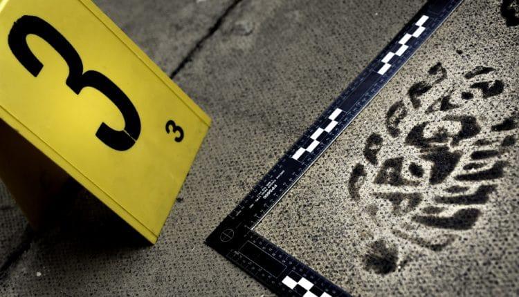 corso-criminologia-scena-del-crimine