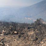 In prima linea la Misericordia di Calci. In azione altre squadre da tutta la Toscana. | Emergency Live 2