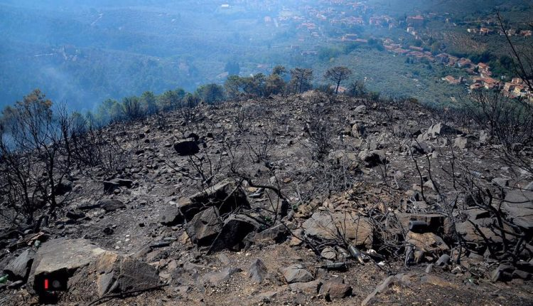 Sporchi, stanchi, ma AIB. Incendio del monte Serra, il racconto di chi c'è stato | Emergency Live 1