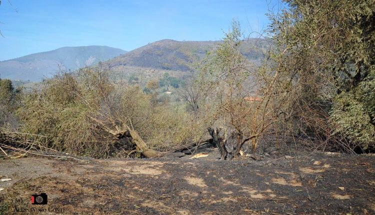Sporchi, stanchi, ma AIB. Incendio del monte Serra, il racconto di chi c'è stato | Emergency Live 3