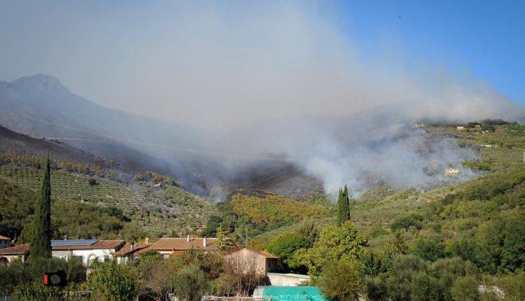 Sporchi, stanchi, ma AIB. Incendio del monte Serra, il racconto di chi c'è stato | Emergency Live 12
