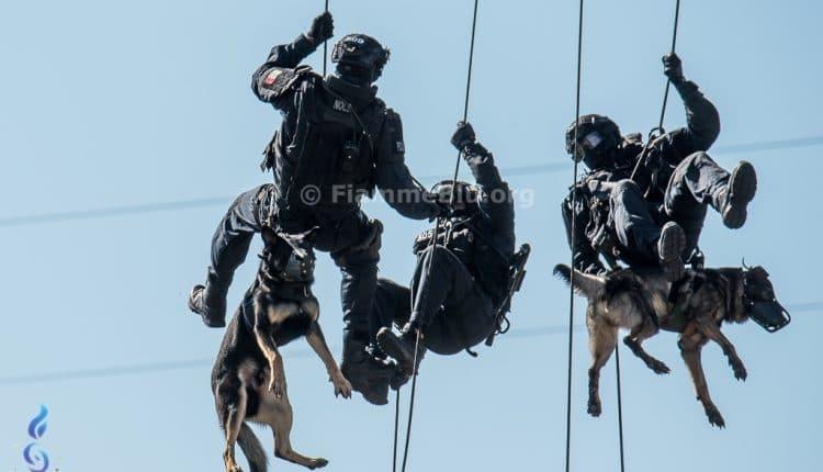 N.O.C.S. della Polizia di Stato, 40 anni di operazioni speciali per la sicurezza nazionale | Emergency Live 11