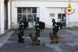 I Vigili del Fuoco italiani vicini alla certificazione mondiale per interventi USAR   Emergency Live 1