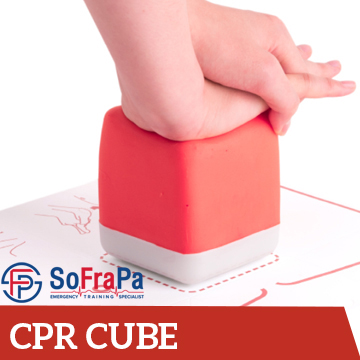 SOFRAPA (cpr cube) 350 x 350 – partners