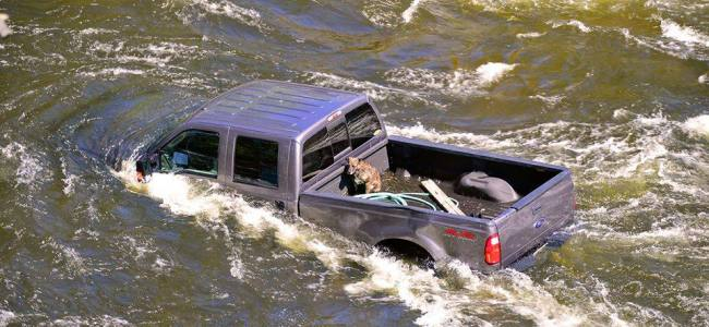 Rescue a dog into a submerged truck