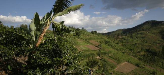 Rwanda: Let's Join Hands to Tackle Climate Change