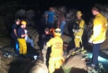 Animal rescue: Horse saved into a ravine in San Bernardino