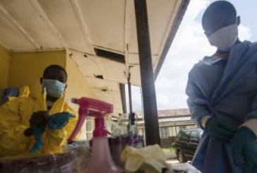 Ebola spreads on West Africa with a significant mutation