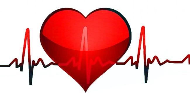 cuore-heart