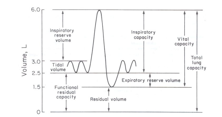 spirometry_diagram1