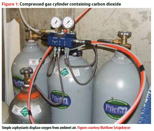 JEMS –  Acute Carbon Dioxide Poisoning Reveals Issues in Patient Rescue and Management