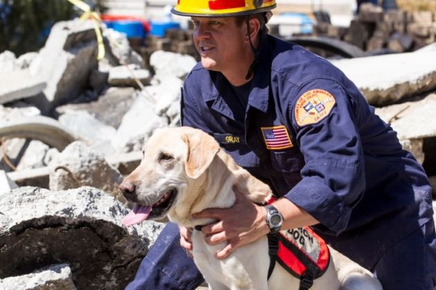 Los Angeles County Fire SAR Dogs assisting in Nepal Earthquake Response