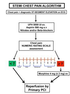 Chest pain algorithm.pptx