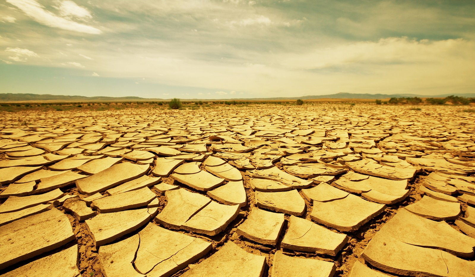 bigstock-drought-land-13849364