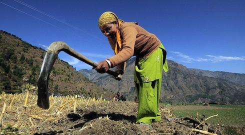 Towards a better understanding of food security, gender equality and peace-building