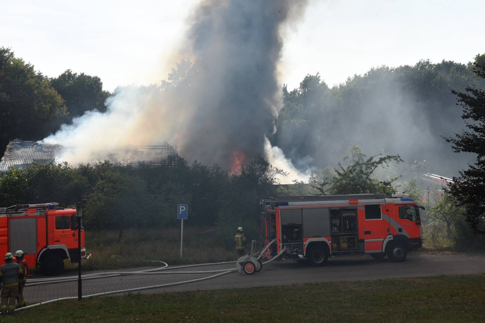 Fire in a Psychiatric Hospital in Wittenau, Berlin