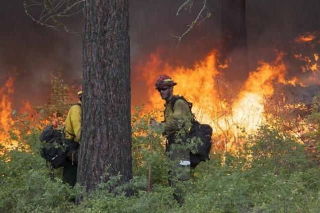 Firefighter McMillen keeps watch over a controlled burn while battling the Carlton Complex Fire near Winthrop