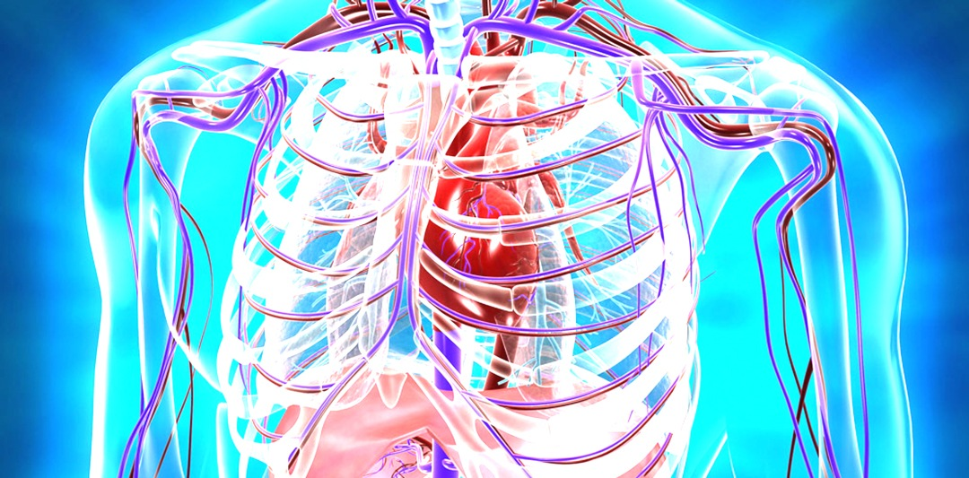 ACLS_system
