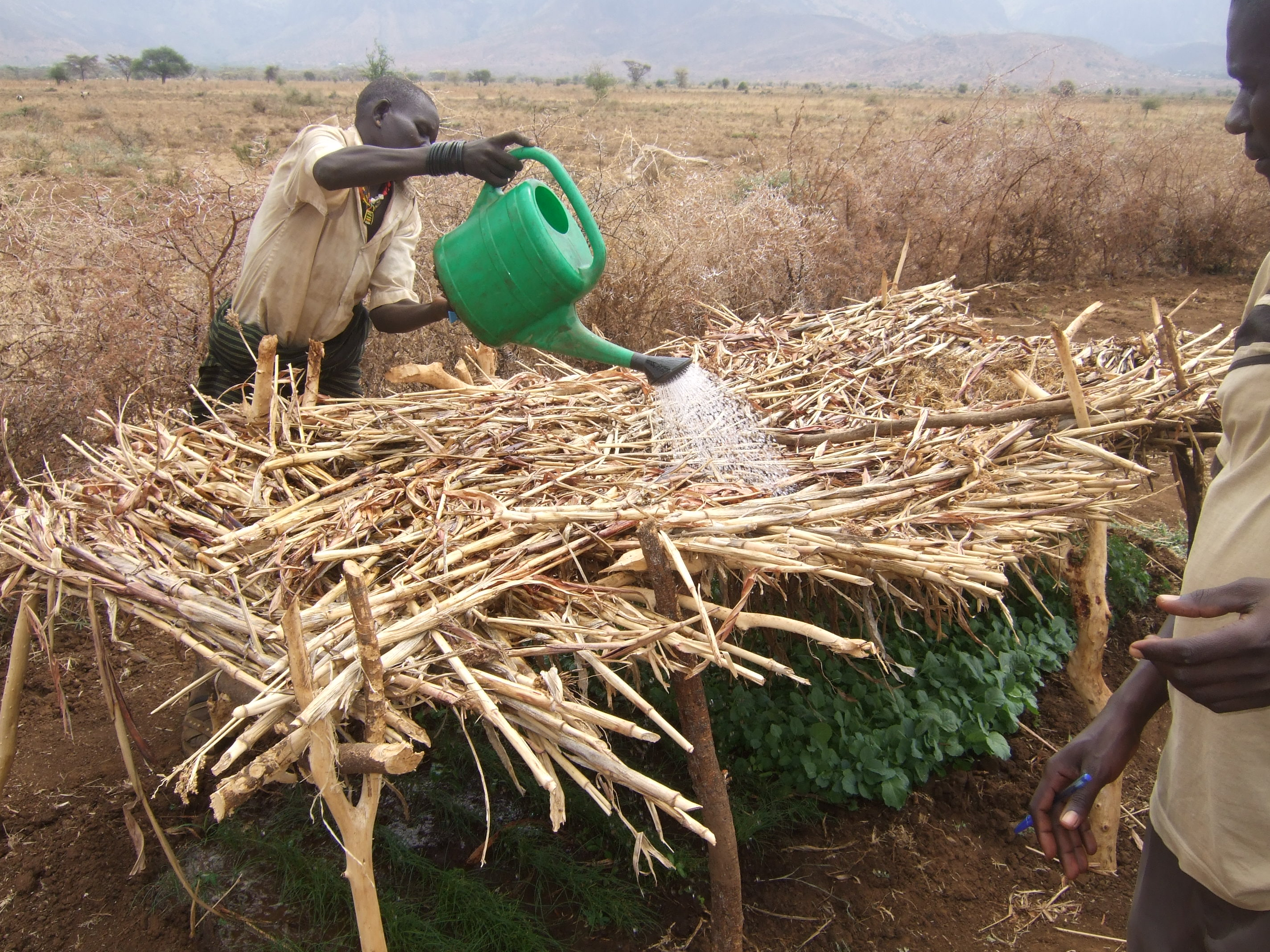 climate_change_adaptation_food_insecurity