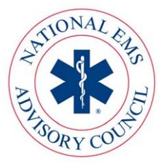 NEMSAC_logo