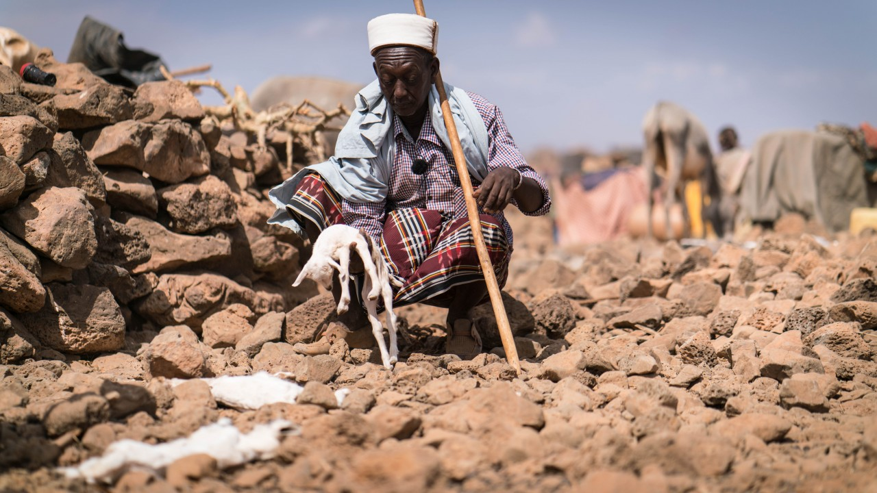 Marsabit drought emergency project