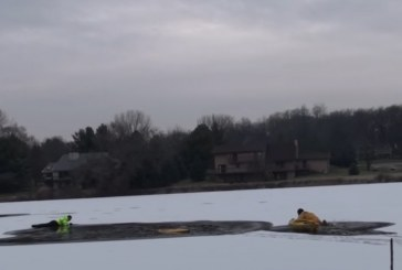 Dog Rescue operation on the ice in Roscoe, Illinois
