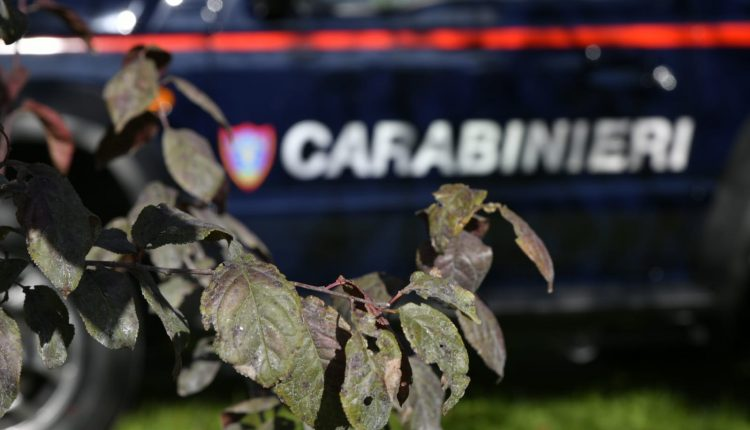 Emergencia en vivo | Suzuki Jimny, el 4WD supercompacto entra en el Carabinieri Corps image 6