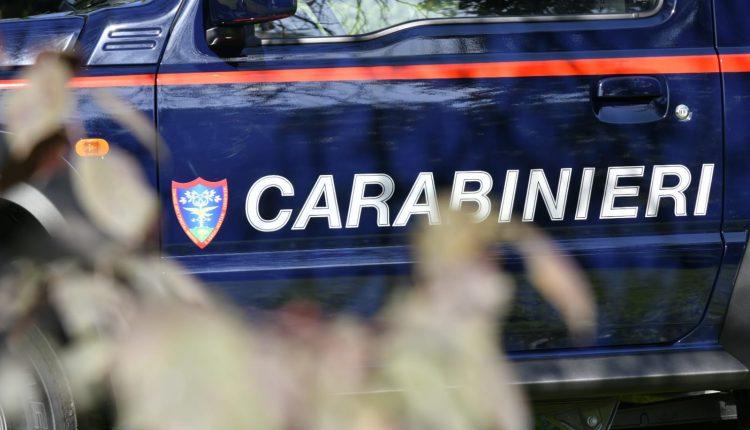 Emergencia en vivo | Suzuki Jimny, el 4WD supercompacto entra en el Carabinieri Corps image 7