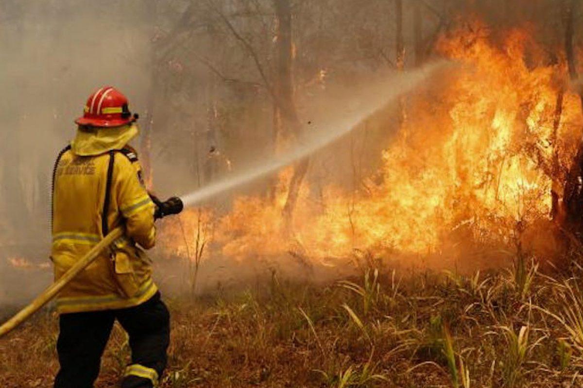 火事 オーストラリア の 山